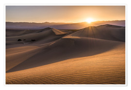 Poster  Sunset at the Dunes in Death Valley - Andreas Wonisch