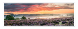 Premium poster Panorama perfect sunrise heath