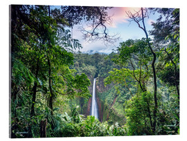 Akrylglastavla  Rainforest and Waterfall, Costa Rica - Matteo Colombo