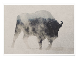 Premiumposter  Bison in the fog - Andreas Lie
