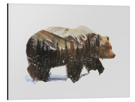 Aluminiumtavla  Arctic grizzly bear - Andreas Lie