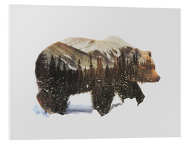 PVC-tavla  Arctic grizzly bear - Andreas Lie