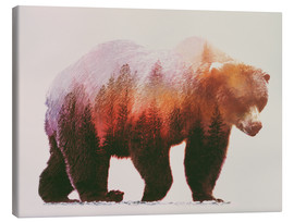 Canvastavla  brownbear - Andreas Lie