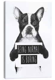 Canvastavla  Being normal is boring - Balazs Solti