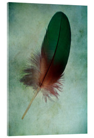 Akrylglastavla  Green feather - Jaroslaw Blaminsky