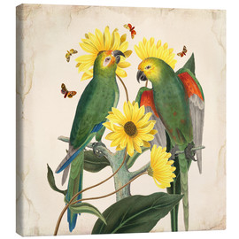 Canvastavla  Oh My Parrot II - Mandy Reinmuth