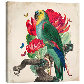 Canvastavla  Oh My Parrot X - Mandy Reinmuth