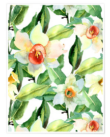 Premiumposter  Daffodils in watercolor