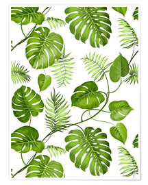 Premiumposter  Monstera and palms