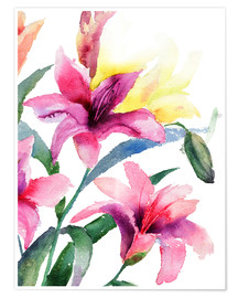 Poster  Lilies in pink