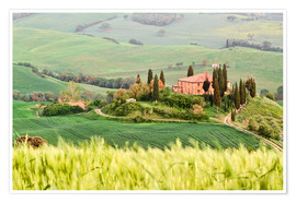 Premiumposter typical Tuscany landscape