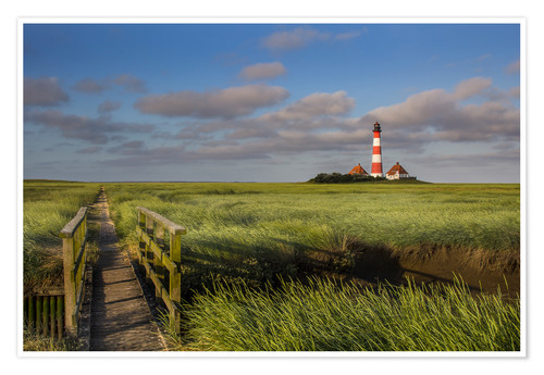 Premiumposter Lighthouse in the salt marshes on the North Coast