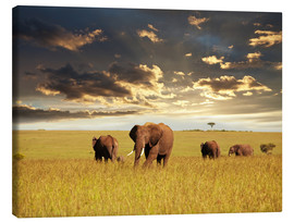 Canvastavla  Elephants in Africa