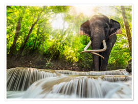 Premiumposter  Asian Elephant
