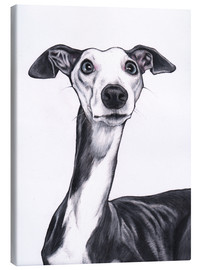 Canvastavla  Whippet, blue and white - Jim Griffiths