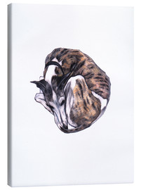 Canvastavla  Whippet at rest, colour pencil portrait - Jim Griffiths