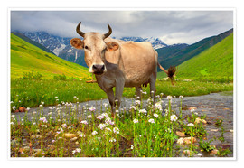 Premiumposter Cattle on a mountain pasture