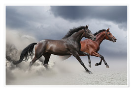 Premiumposter  Horses in the storm