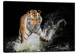 Canvastavla  Tiger Makes the water