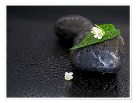 Premiumposter Black stones with leaf