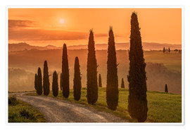 Premiumposter  Golden Morning - Tuscany - Achim Thomae