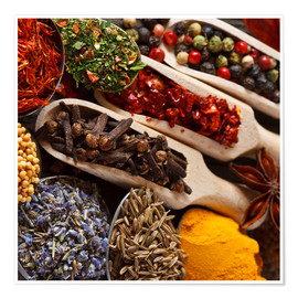 Premiumposter  Colorful spices and herbs