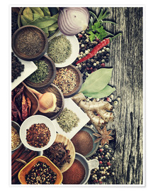 Premiumposter  Spices And Herbs On Rusty Old Wood