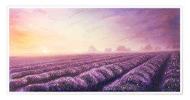 Premiumposter  Lavender dream