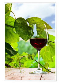 Premiumposter glass with red wine in vineyard