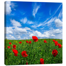 Canvastavla  Red poppies on green field