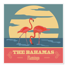 Premiumposter  The Bahamas - Flamingo