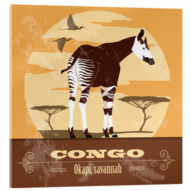 Akrylglastavla  Congo - Okapi - Kidz Collection