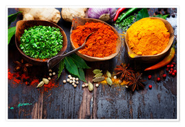 Premiumposter  Colorful spices diversity