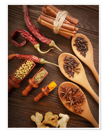 Premiumposter Spices Still Life