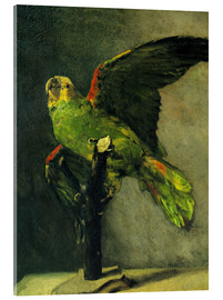Akrylglastavla  The green parrot - Vincent van Gogh
