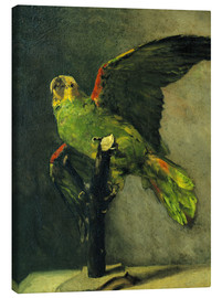 Canvastavla  The green parrot - Vincent van Gogh