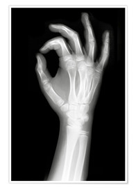 Premiumposter  X rayed OK sign