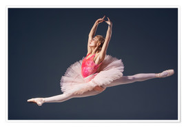 Premiumposter pink tutu and pointe shoes