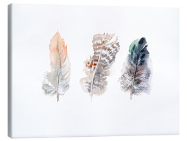 Canvastavla  3 feathers - Verbrugge Watercolor
