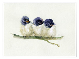Poster  3 little swallows - Verbrugge Watercolor