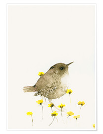 Poster  Wren amongst yellow flowers - Dearpumpernickel