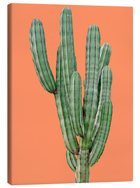 Canvastavla  Cactus in orange - Finlay and Noa
