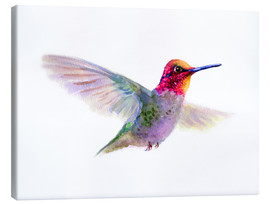 Canvastavla  Hummingbird - Verbrugge Watercolor