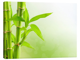 Canvastavla  green bamboo