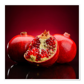 Poster  Red Pomegranate