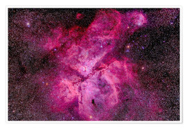 Poster  The Carina Nebula in the southern sky - Alan Dyer