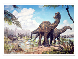 Premiumposter  Large Dicraeosaurus sauropods from the Late Cretaceous of Africa.. - Mark Hallett