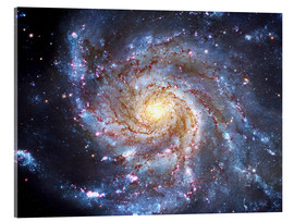 Akrylglastavla  The Pinwheel Galaxy at Ursa Major - Robert Gendler