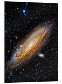 Akrylglastavla  Messier 31, the Andromeda Galaxy. - Roberto Colombari