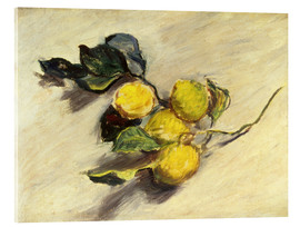 Akrylglastavla  Branch a lemon tree - Claude Monet
